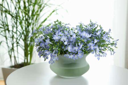 lobelia: Lobelia flowers