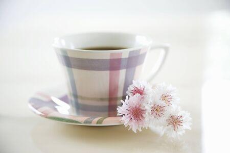 fiordaliso: Fiordaliso e tazza di caffè