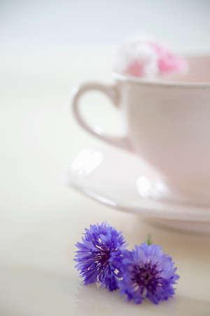 cornflower: Cornflower and coffee cup