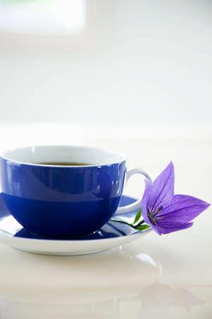 bellflower: Bellflower and coffee cup