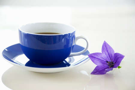 bellflower: Bellflower and coffee cup