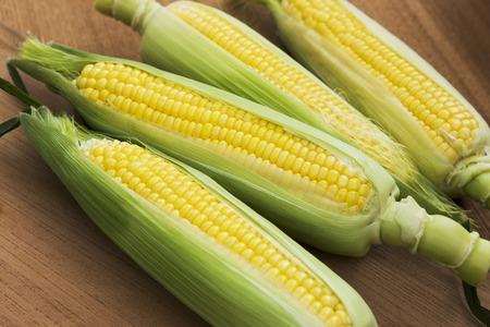 Corn Stock fotó
