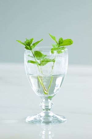 into: Mint went into the glass