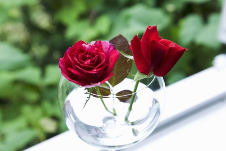 windowsill: Rose windowsill