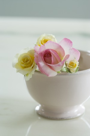 ikebana: Rose went into the cup
