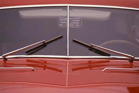 windshield: windshield