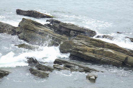 sediments: Cretaceous shallow marine sediments of Inubosaki Stock Photo