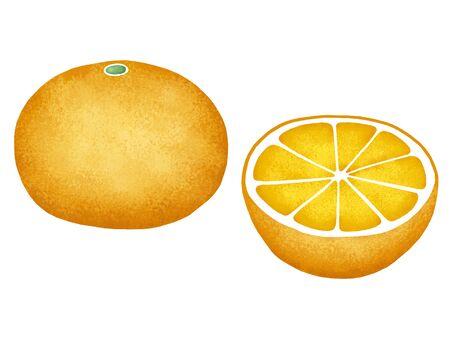 mandarin: Mandarin orange Stock Photo