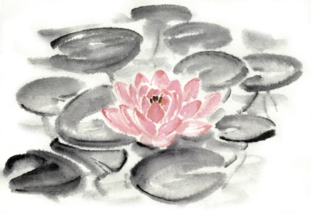 waterlily: Water lilies