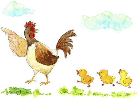 pullet: Parent and child chicken