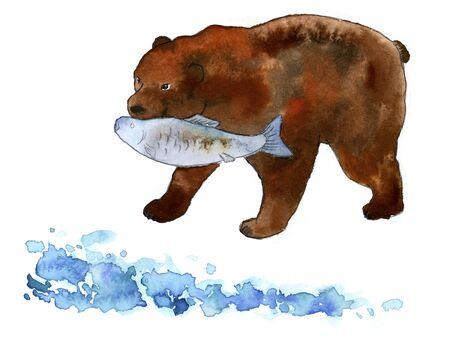 capturing: Bear