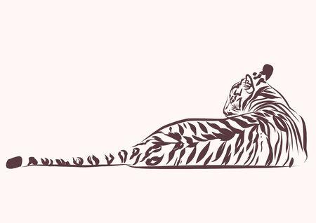 虎横フラット バック