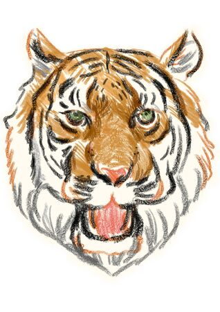 barking: Barking of tiger face of sketch Stock Photo