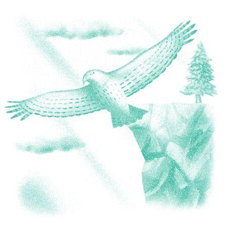goshawk: Goshawk to glide
