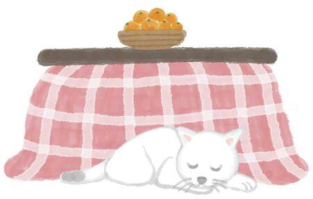 cat sleeping: Cat sleeping in kotatsu