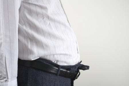 fatness: Obesity