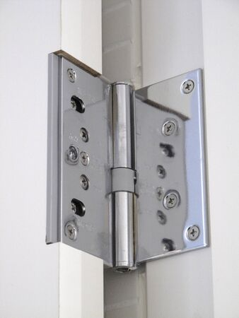 Hinge of stainless