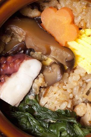 longitudinal: Octopus rice