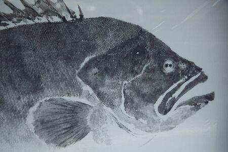 魚を印刷します。