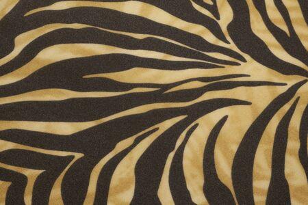 タイガーのパターン 写真素材