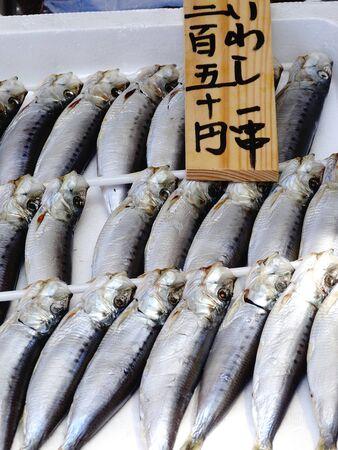 dried fish: Urume sardine of dried fish Stock Photo