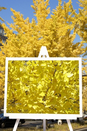 synthesis: Synthesis of ginkgo and easel of Mido Stock Photo