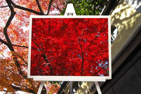 synthesis: Synthesis of autumn leaves and easel