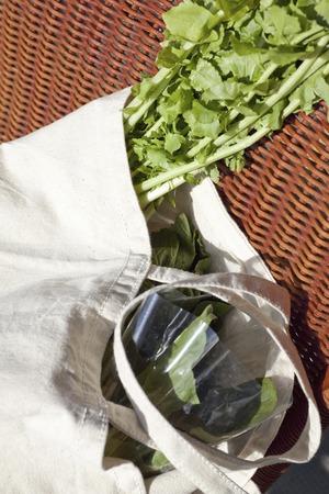 put on: Put the vegetable eco bag