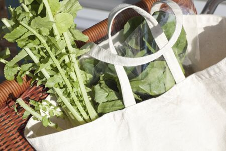 put: Put the vegetable eco bag