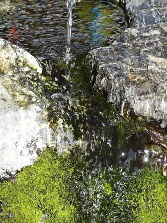 groundwater: Natural spring water Stock Photo