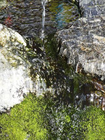 spring water: Natural spring water Stock Photo