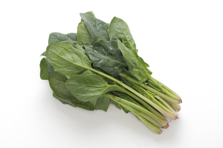 Spinach Stock Photo