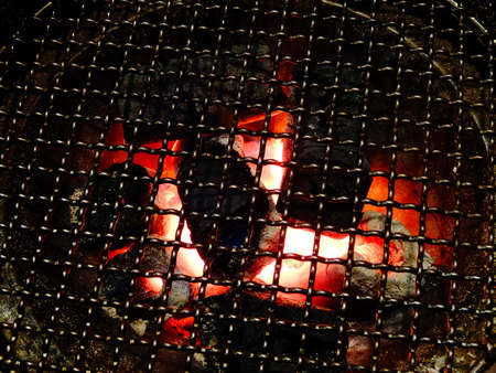 wire mesh: Roast of wire mesh and briquettes