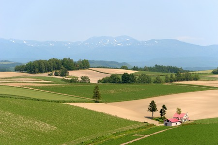 biei: The hills of Biei and Daisetsuzan