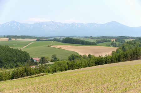 biei: Hills and Tokachi mountain range Biei