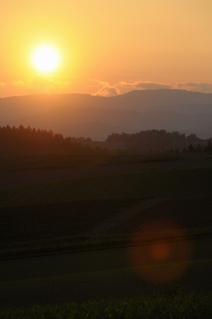 biei: Hills and sunset of Biei