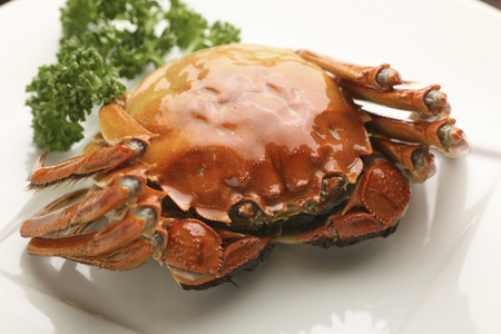 Shanghai crab Stock Photo