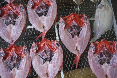 fishery products: Dried fish