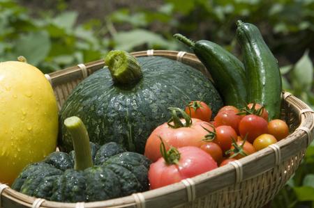aliments: Natsuno vegetables