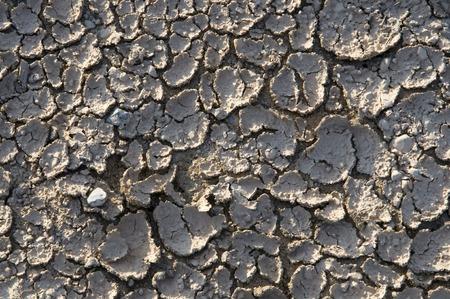 sequias: Sequía