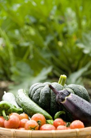 Natsuno vegetables
