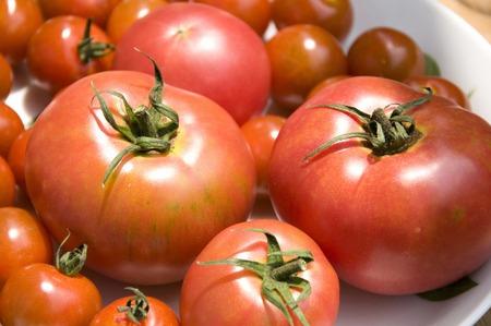 aliments: Tomato