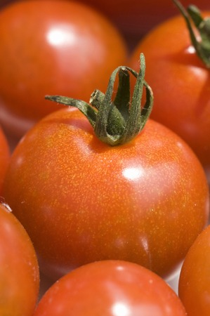 aliments: Tomate Banque d'images