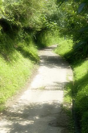 straight path: Lane Stock Photo