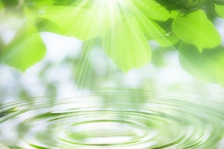 Ripples and fresh green