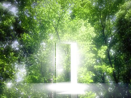 Door light comes