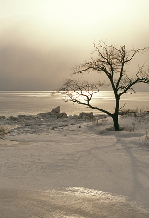 frigid: Frigid morning of Rausu