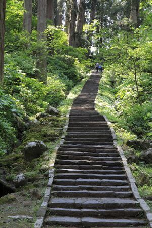 stone steps: Stone steps of Haguro approach