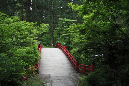 haiku: Approach of Haguro