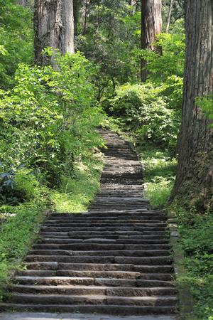 haiku: Stone steps of the haguro mountain Stock Photo